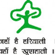 MOEF National Green Tribunal stenographer Grade D posts – 3 vacancy